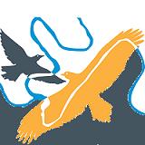 logo-wurundjeri-square